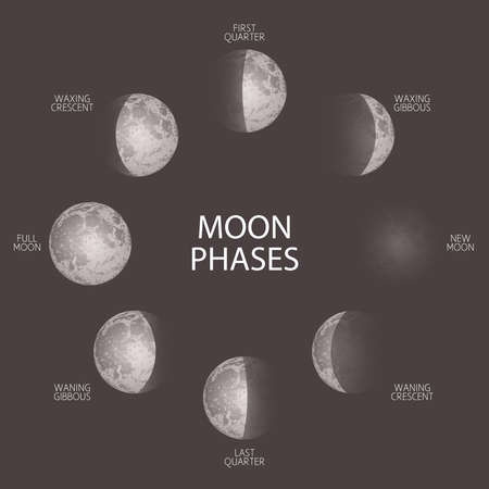 Moon phases sketch vector illustration. Hand drawn poster with cycle from fuul to new moon