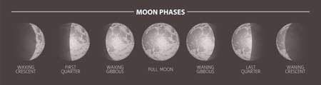 Moon phases sketch vector illustration. Hand drawn poster 일러스트