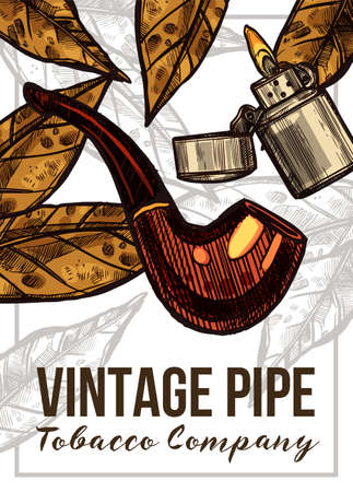 Vector color hand drawn poster with sketch vintage retro pipe, lighter and tobacco leaves. Template of design about smoking Illustration
