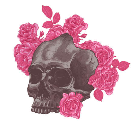 Human skull with roses flowers. Gothic mystical print or poster in high detailed engraved drawing vintage style. Day of the Dead, mexican holiday of death. Vector hand drawn illustration Ilustrace