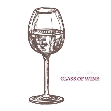 Vector wine glass with alcohol beverage. Sommelier symbol. Sketch hand drawn etching engraved illustration