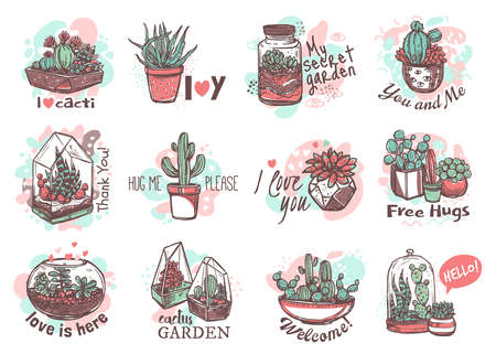 Houseplants cute and funny hand drawn stickers set. Succulents with free hugs, thank you, my secret garden lettering pack. Cactus in vases and glass florarium patches. Exotic cacti illustration