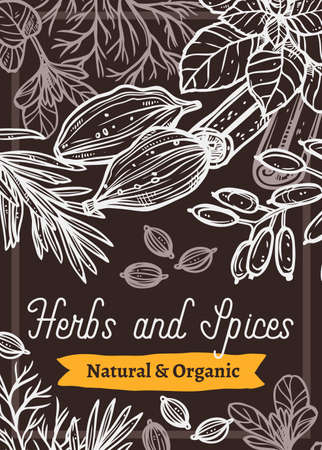 Spices and herbs chalk hand drawn banner template. Cardamom seeds and cinnamon sticks white line art on black background. Tarragon, rosemary outline illustration. Organic products store brochure
