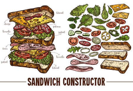 Hand drawn vector sandwich with ingredients. Sketch illustration burger products components and elements. Constructor for fast food restaurant menu