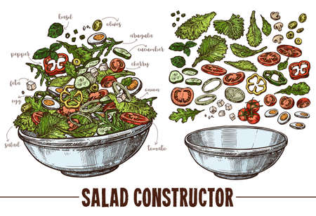 Vector set of sketch elements, components and ingredients for vegetables salat. Hand drawn collection of cut products and plate