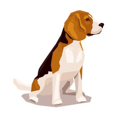 Cute cool sitting beagle puppy. Flat dog vector illustration. Domestic pet behavior 矢量图像