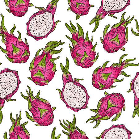 Dragon fruit seamless doodle pattern in color. Vector sketch hand drawn background. Freehand style bright backdrop with exotic tropical pink pitaya fruits