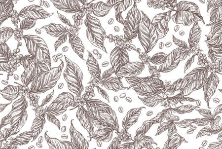 Seamless vector pattern with coffee tree and plants. Coffee growing background in hand drawn engraving style. Monochrome sketch of grains, berries, foliage and flowers Stock Illustratie