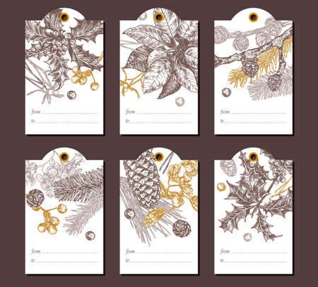 Collection of vector Christmas and New Year floral botanical greeting tags. Holiday banners with festive plantshand drawn engraved illustrations: fir, larch, spruce, poinsettia, holly berry Ilustração