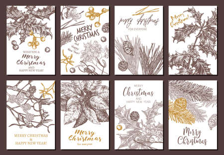 Collection of vector Christmas and New Year floral botanical greeting cards. Holiday banners or posters with festive plants hand drawn illustrations: fir, larch, spruce, poinsettia, holly berry