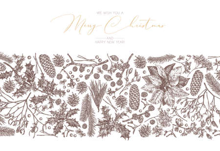 Christmas festive vintage background with linear border frame with flowers and evegreen plants. Vector sketch engraved botanical set. Floral hand drawn etching fir-tree, holly berries, cones, spruce, mistletoe