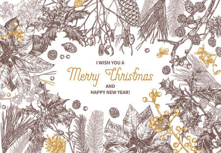 Sketch background made with christmas festive plants, branches of fir, larch, spruce, poinsettia, holly berry, mistletoe, cones. Holiday hand drawn botanical frame with greeting or invitation Stock Illustratie