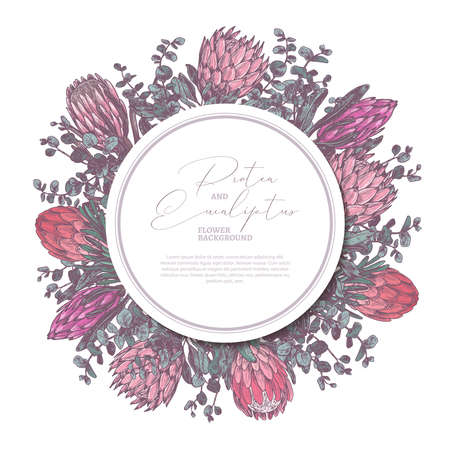 Vector hand drawn background with protea and eucalyptus with circle label or tag. Color botanical floral illustration with exotic flowers for cards, invitation, wedding, greeting