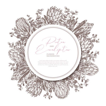 Vector hand drawn background with protea and eucalyptus with circle label or tag. Botanical floral illustration with exotic flowers for cards, invitation, wedding, greeting Ilustração