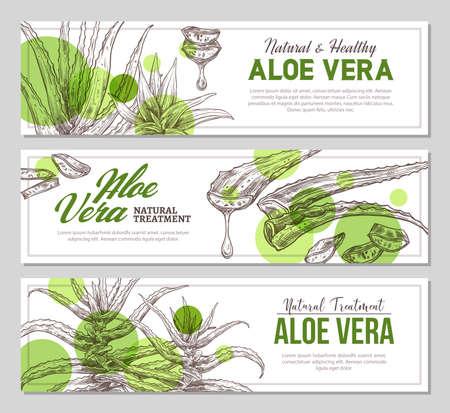 Aloe vera vertical banners with sketch botanical illustrations of medicine plants. Vector template design 矢量图像