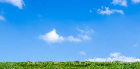 Green grass and blue sky with white clouds Stock Photo
