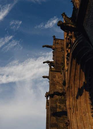 Gargoyle or gargouille - Carcassonne, France Redakční