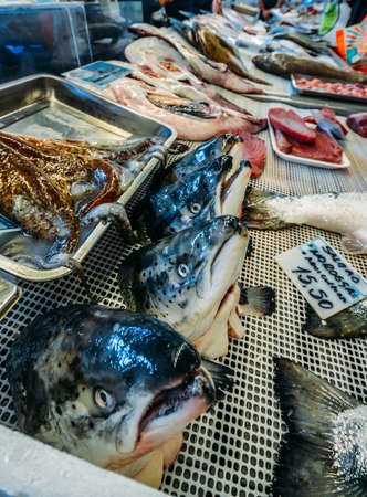 Wide angle view of fresh local fish in the village market in Cascais, Portugal Éditoriale