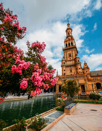 Pink flowers with copy space at Plaza de Espana in Seville, Andalucia, Spain