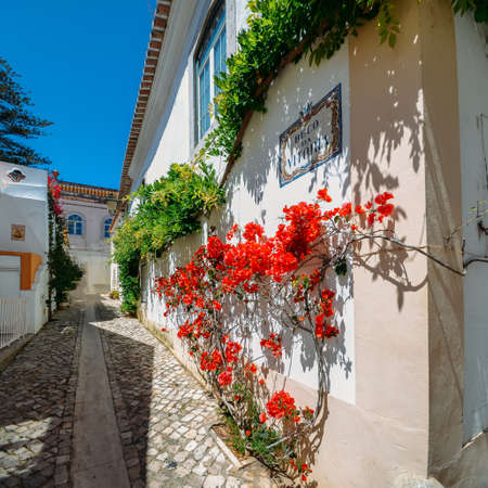 Narrow, cozy and beautiful streets of Cascais, district of Lisbon, Portugal during sunny day