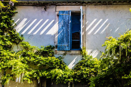 France, Provence. Typical old house, open window with the blue shutters surrounded a green plants