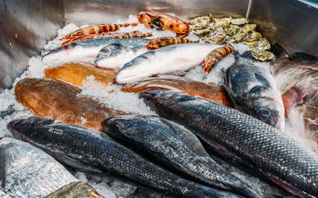 High Angle Still Life of Variety of Raw Fresh Fish Chilling on Bed of Cold Ice in Seafood Market Stall