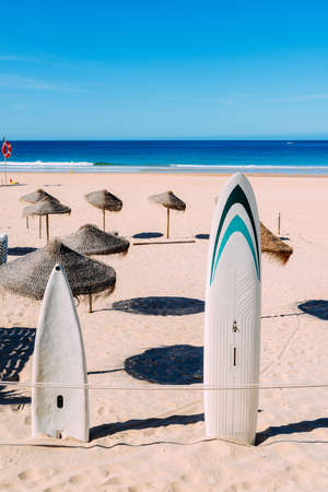 Surfboards on empty beach in the summer
