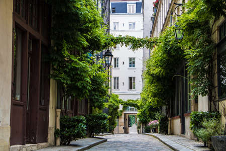 Parisian street with green vines on the walls of residential buildings in Illes district of Paris, France