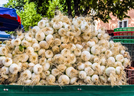 Fresh onions in an outdoor market stall Banco de Imagens