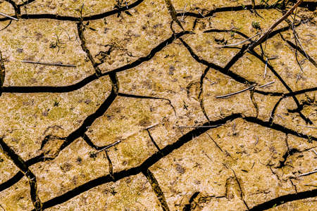 The texture of dry cracked clay soil. Cracks and fractures on the earths surface.