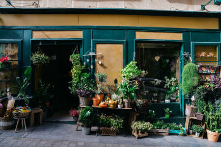 Facade of flower shop with various different types of plants on display. Фото со стока