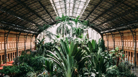 Madrid, Spain - Nov 9, 2019: Original 19th century Atocha Railway Station is now a concourse with shops, cafes and a botanical garden forming the entrance to the new station