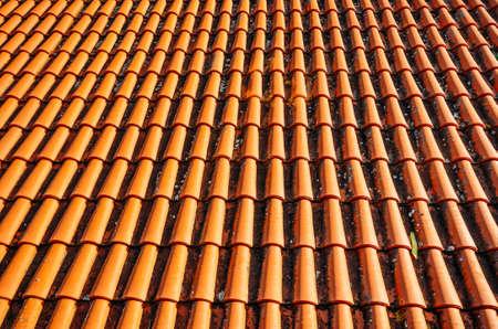 Jasno oświetlony dach czerwonymi dachówkami na tle.