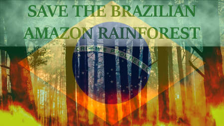 Save the Brazilian Amazon Rainforest from destruction message
