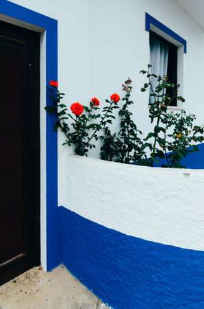 Red roses on a facade of a whitewashed building in Porto Covo, Alentejo, Portugal Stock fotó