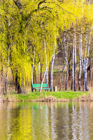 peaceful scene: Peaceful scene of a bench and a lake Stock Photo