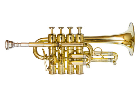 Piccolo Trumpet isolated on white