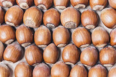 hazelnuts: Fondo de las avellanas