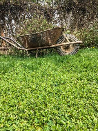 Wheelbarrow by a bush