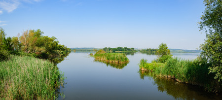 Calm surface of lake Kis-Balaton surrounded with lush vegetation in bright summer day, Heviz, Hungary. Stock fotó