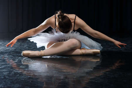 Young ballerina with a perfect body is dancing in the photo studio.