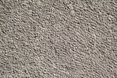 calcareous: Texture of calcareous stone. Can see fossils zooming the image.