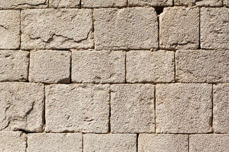 calcareous: Texture of Cathedral wall. Calcareous stone.