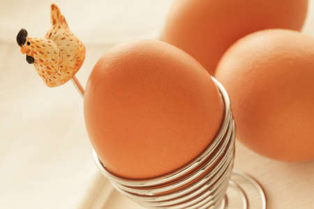 Fresh eggs with natural light.