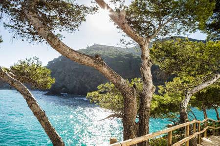 cami: Cami de Ronda, small pathway near the sea in Costa Brava, Begur. Stock Photo