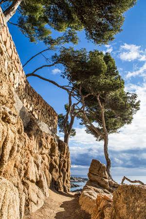 Pathway landscape of cami de ronda, calonge, Costa Brava. Spain.