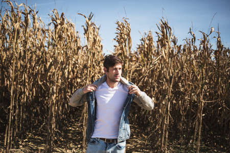brutal: Brutal man walking against of withered cornfield. Sunlight