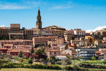 Vineyard landscape of Briones, La Rioja.