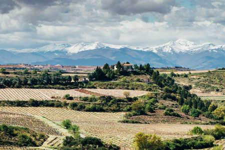 alava: Landscape of Elciego village, famous by its vineyards. Spain