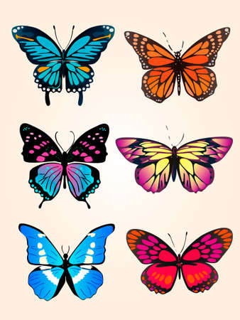 butterfly-two